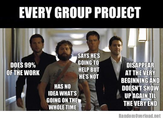 491afunny-Hangover-group-project
